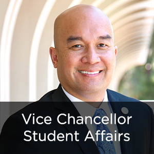 Vice Chancellor, Student Affairs