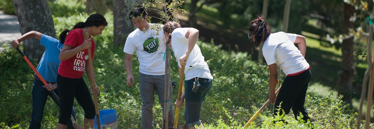 The Green Initiative Fund engages students in all aspects of sustainability »